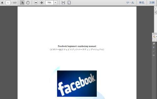 フェイスブック収入プロジェクト【FIP】特典3