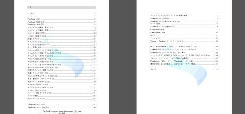 フェイスブック収入プロジェクト【FIP】特典4