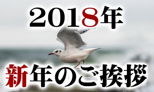 2018挨拶DRMコンサル2